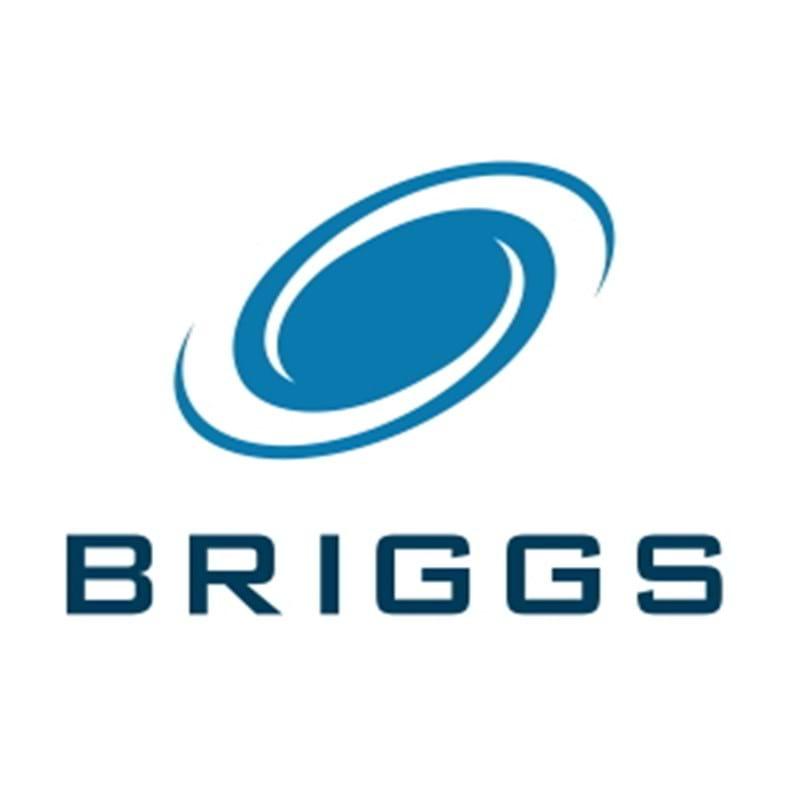 Briggs of Burton