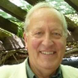 David Lemon, David Lemon Consultants