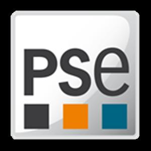 Process Systems Enterprise (PSE)