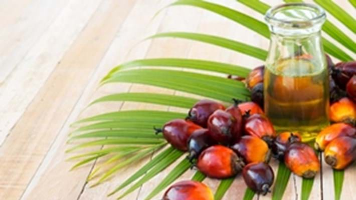 Celebrate 100 years of Palm Oil
